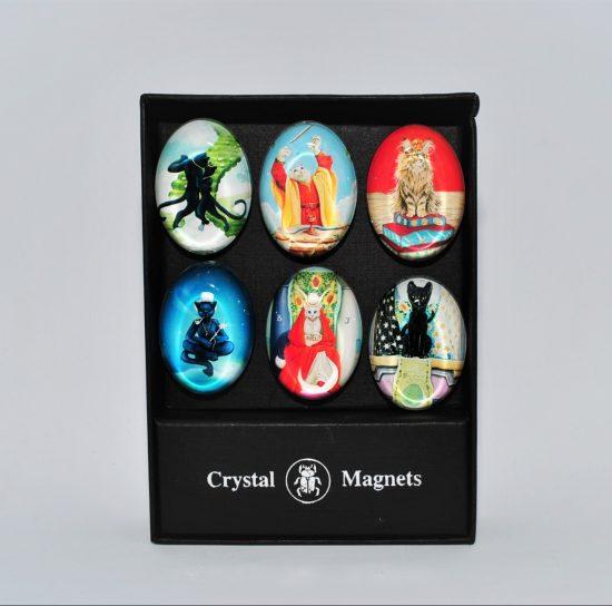 Cat Magnets set of six