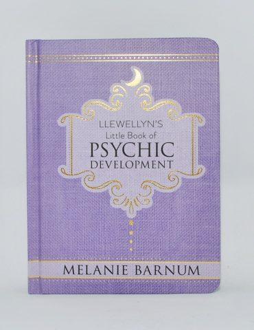 Lewellyns Little book of Psychic Development